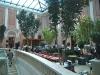 The tea-room atrium